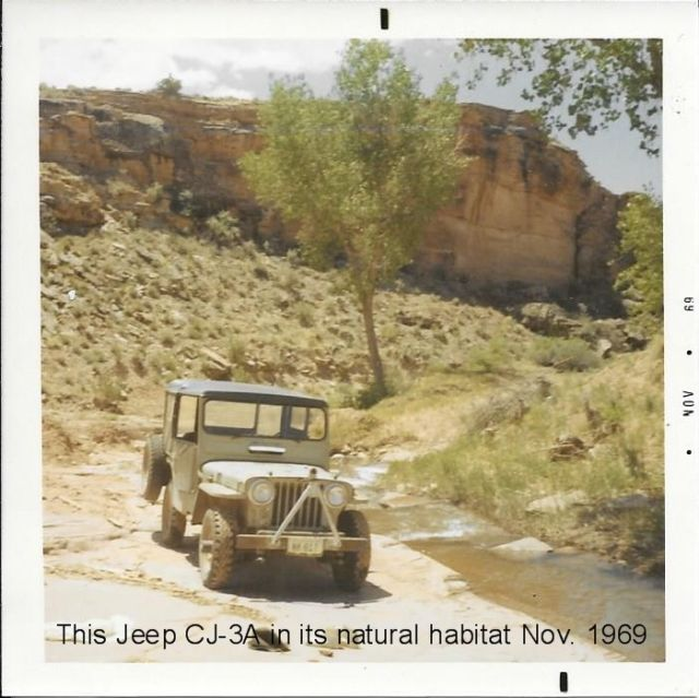 1949 Willys-Overland Jeep CJ-3A 1/4 Ton for sale: photos