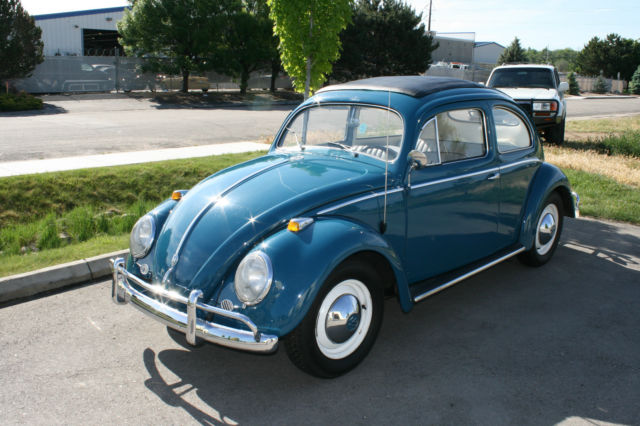 1955 Volkswagen Beetle For Sale Photos Technical