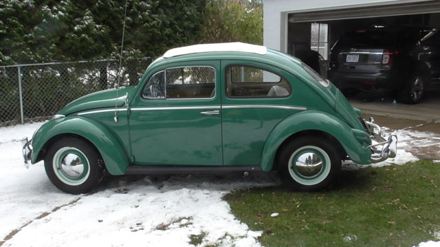 vw beetle ragtop sunroof rare  yr  color extremely solid  sale