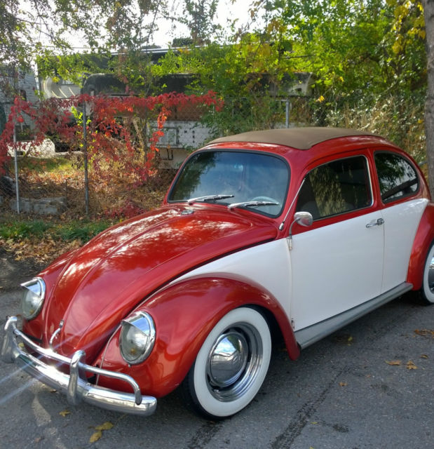 Volkswagen Bug For Sale: 1964 Volkswagen Beetle Ragtop Custom For Sale: Photos