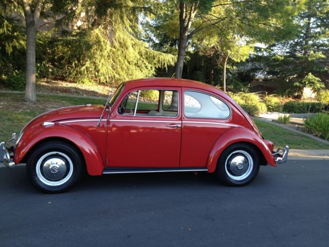 1966 volkswagon beetle one owner for sale photos technical specifications description. Black Bedroom Furniture Sets. Home Design Ideas