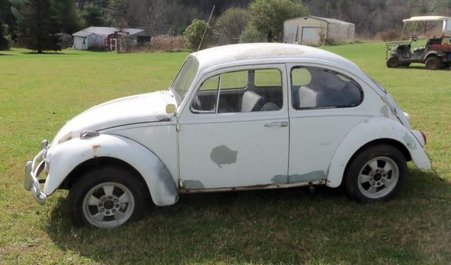 1967 vw beetle bug project car or rat rod for sale photos technical specifications description. Black Bedroom Furniture Sets. Home Design Ideas
