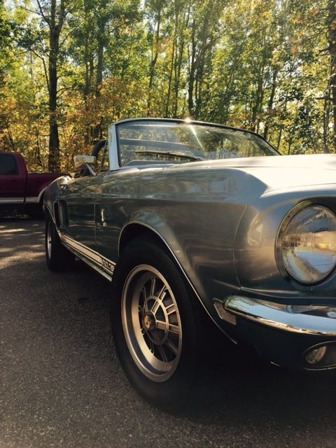 1968 ford shelby gt350 convertible clone for sale photos technical specifications description. Black Bedroom Furniture Sets. Home Design Ideas