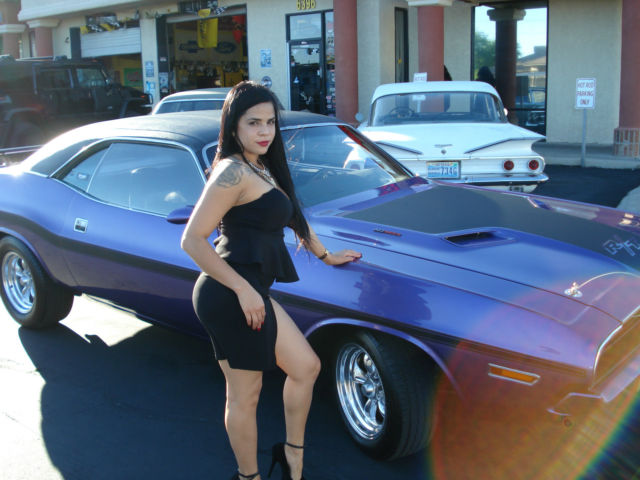 dodge challenger rt se registered chrysler registry plum purple dodge. Cars Review. Best American Auto & Cars Review