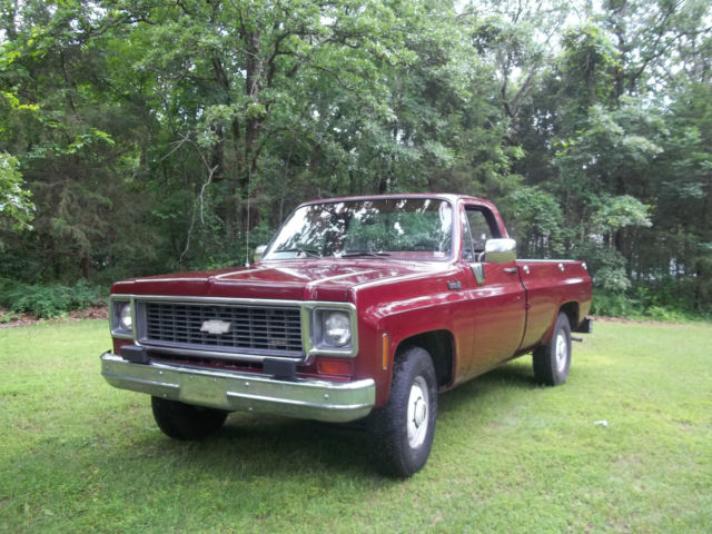 1973 Chevrolet Other Pickups C20