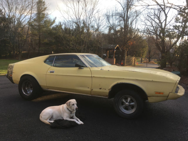 1973 Ford Mustang Base Fastback 2-Door