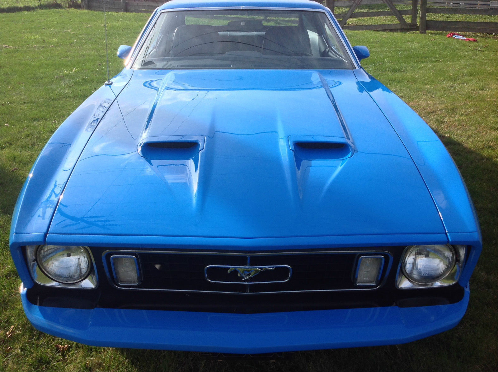 1973 Ford Mustang Mustang