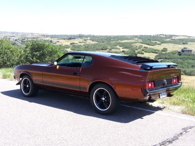 Buy Roof Mustang Mach 1 1971 1972 And 1973 Autos Post