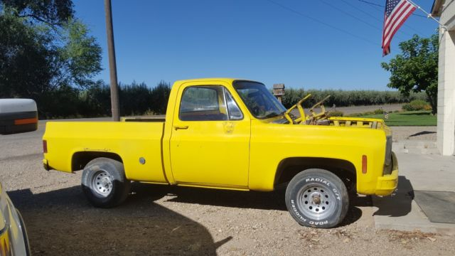 1974 Chevrolet Other Pickups