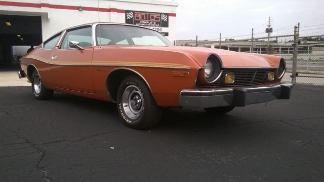 1976 AMC Other