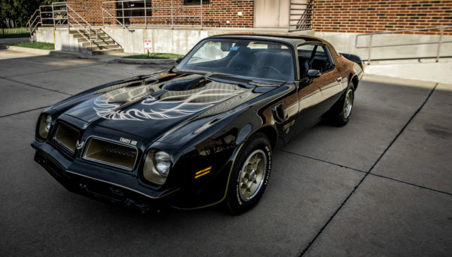 1976 pontiac trans am special edition for sale photos. Black Bedroom Furniture Sets. Home Design Ideas