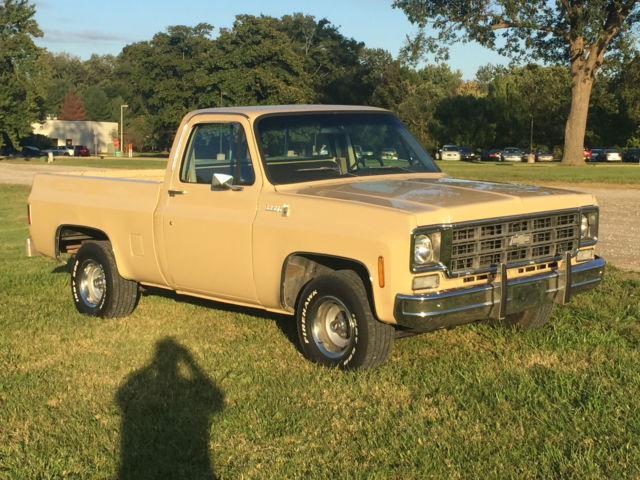 1978 Chevy Truck Bed For Sale