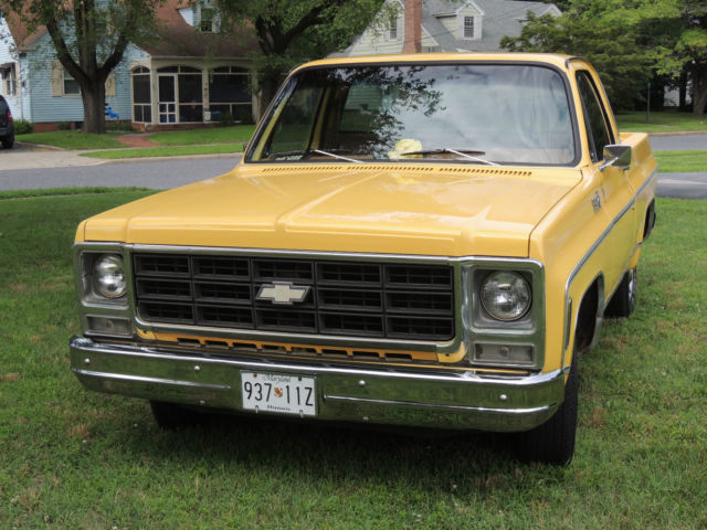 1979 Chevrolet Other Pickups C-10 Short Bed