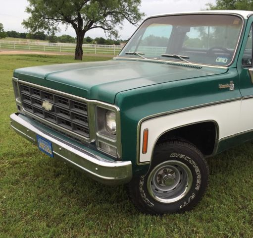 1979 chevrolet truck for sale in texas autos post. Black Bedroom Furniture Sets. Home Design Ideas