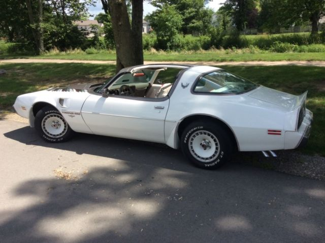 1980 80 Trans Am Indianapolis 500 Pace Car For Sale Photos Technical Specifications Description