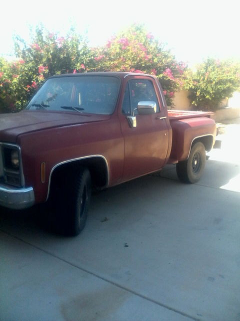 1980 Chevrolet Other Pickups stepside