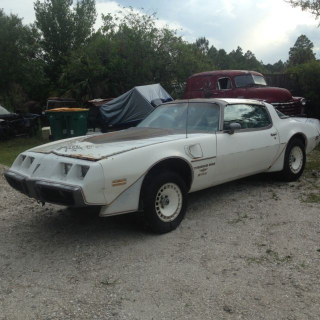 Used Turbo Coupe: 1980 Pontiac Trans Am Indianapolis Pace Car Turbo Coupe