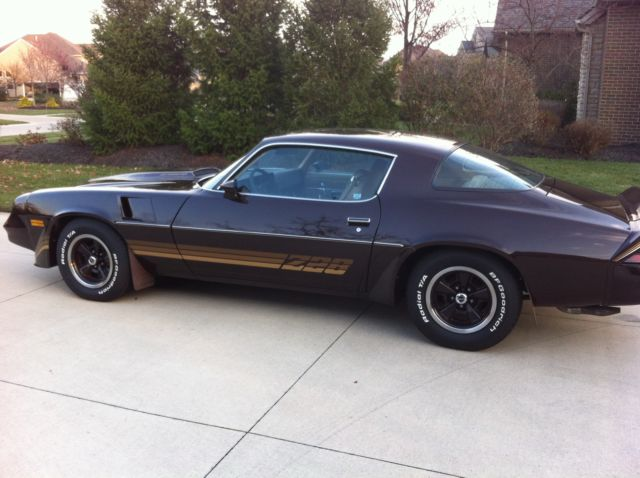 1981 Chevrolet Camaro 2dr Coupe