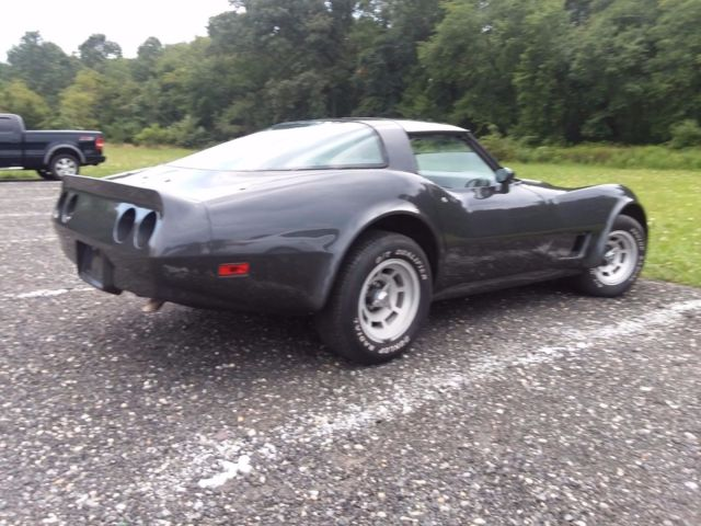 1981 Gray Chevrolet Corvette special eddition 2 dr. coupe with silver interior