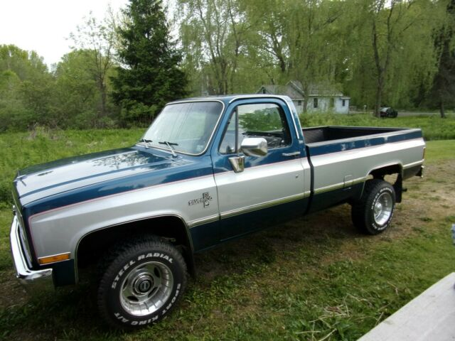 1981 Chevrolet Other Pickups