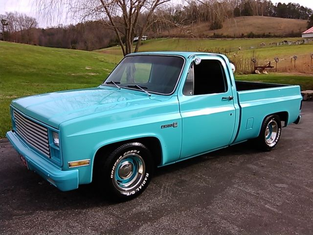 1981 gmc 1500 sierra truck same as 1981 1987 chevrolet c 10 etc for sale photos technical. Black Bedroom Furniture Sets. Home Design Ideas