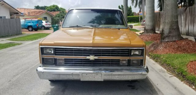 1984 Brown & Beige Chevrolet C-10 Standard Cab Pickup with Brown interior