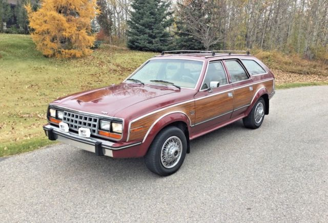 1987 AMC Other Limited