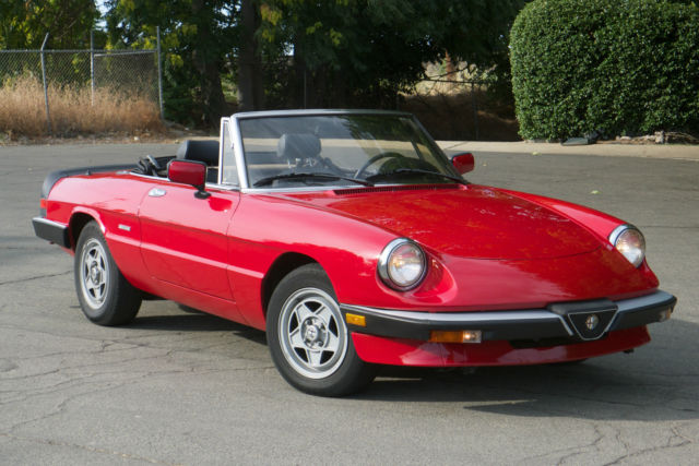 1988 Alfa Romeo Spider Graduate Convertible for sale ...