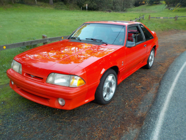 1993 ford mustang cobra future classic getting harder to find for sale photos technical. Black Bedroom Furniture Sets. Home Design Ideas
