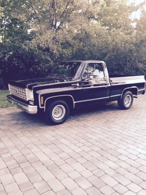 1976 Chevrolet Other Pickups Shortbed