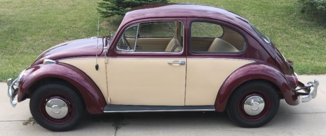 1967 Burgundy Volkswagen Beetle - Classic Coupe with Tan interior