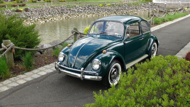 classic vw bugs 1967 green vw volkswagen beetle fully restored by vallone nr for sale photos. Black Bedroom Furniture Sets. Home Design Ideas