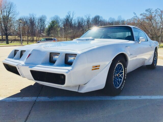1981 Pontiac Trans Am Firebird