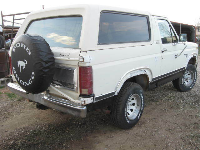 1981 Ford Bronco XLT