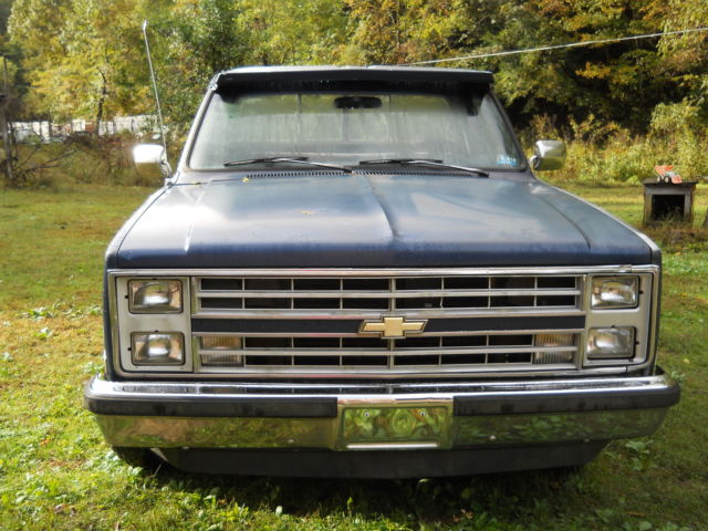 1987 Chevrolet Other Pickups C 10