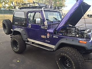 jeep wrangler custom built w gm 350 crate engine 4 rubicon lift more for sale photos. Black Bedroom Furniture Sets. Home Design Ideas