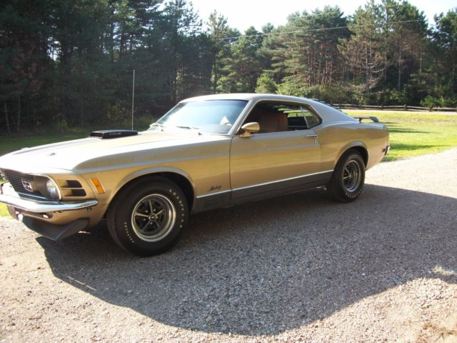 1970 Ford Mustang Delux