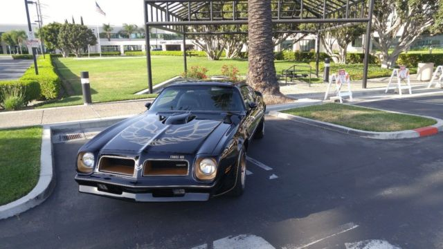 1976 Pontiac Trans Am 50th Anniversary