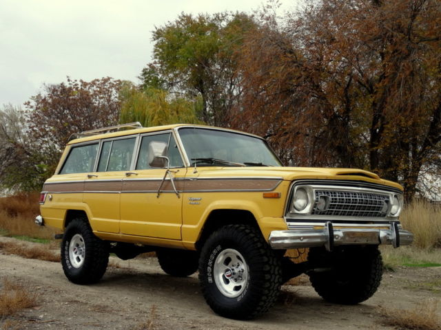 1974 Jeep Wagoneer Wagoneer, Chief