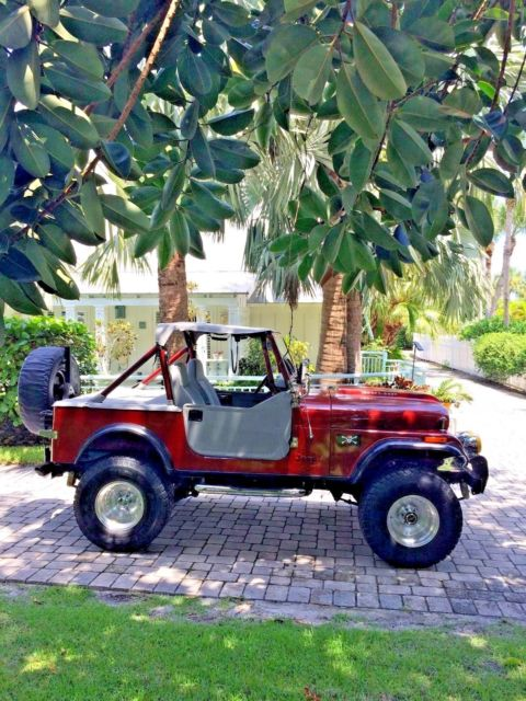1980 Jeep Wrangler Custom