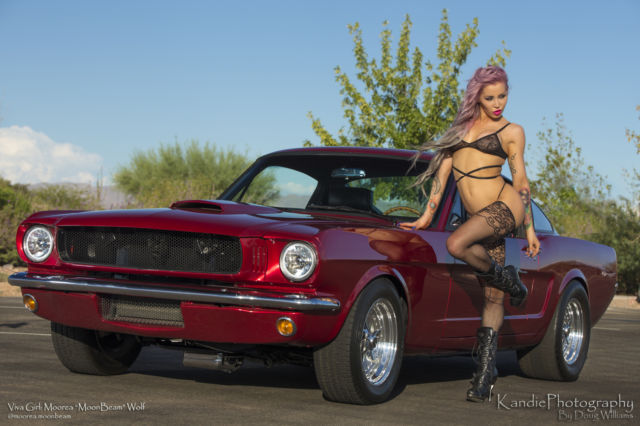 1965 Ford Mustang PROTOURING FASTBACK GT HIGHLY MODIFIED 414 STROKE