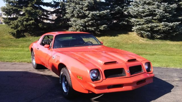 1977 Pontiac Trans Am 4 SPEED 4 BBL