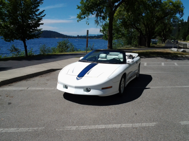 Transam 25th Anniversary Convertible For Sale Photos