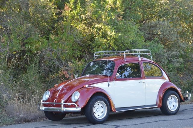 1966 Volkswagen Beetle - Classic Beautiful Bug - Lots of New Parts - NO RESERVE